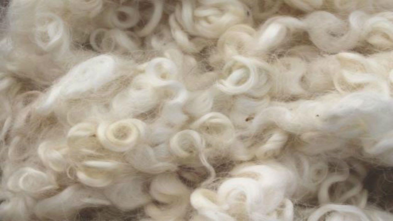 Fibre Guide: Wool